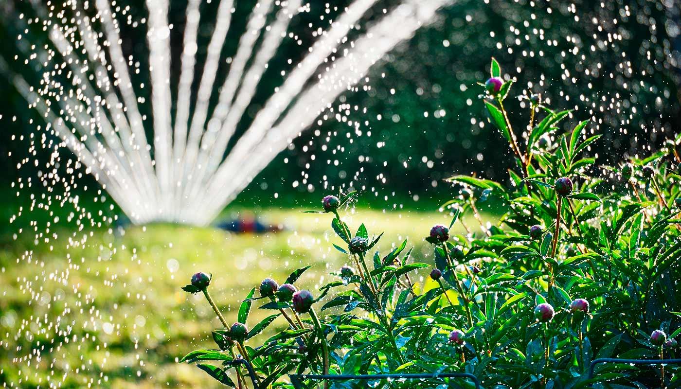 Rasensprenger | Bewässerungssystem | Gießen | 1A Garten Zitzelsberger in Ingolstadt