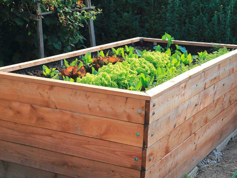 Gemüse | Hochbeet | Urban Gardening | Ingolstadt | 1A Garten Zitzelsberger