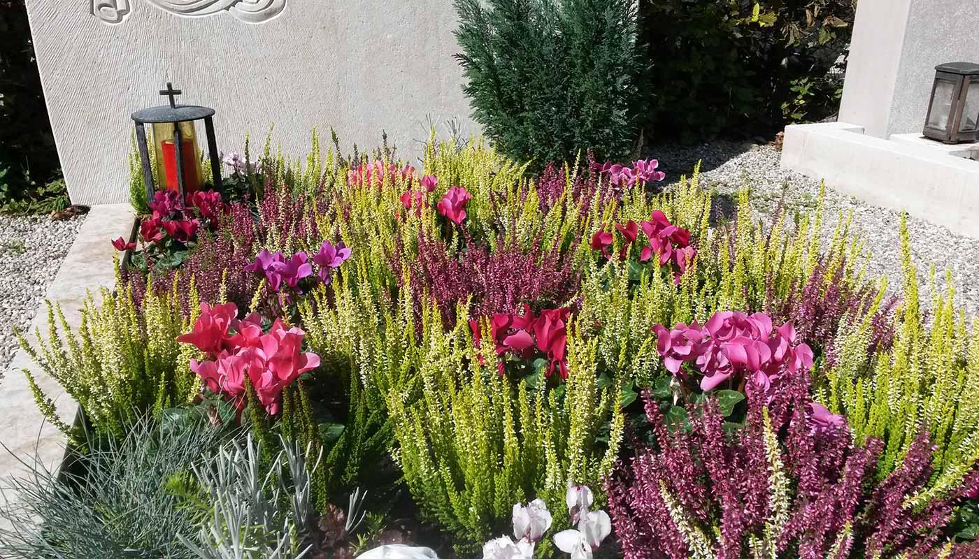 Herbstlich bepflanztes Grab in Rottönen mit Chrysanthemen und Stauden.