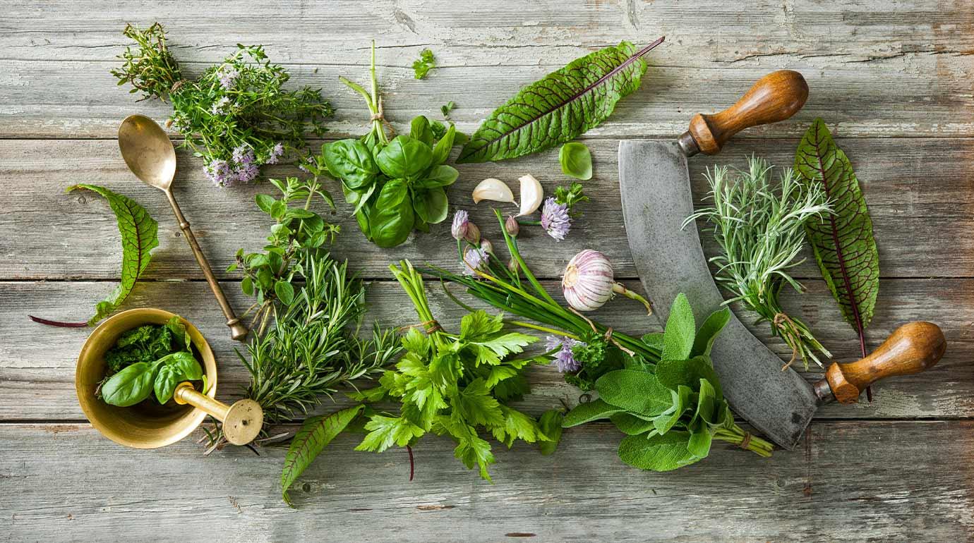 Vielzahl an grünen Küchenkräutern auf einem Holztisch, dazu Knoblauch, Löffel Gewürzmühle.
